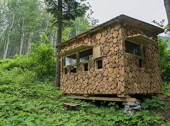 Bear sighting spot in Velebit mountains