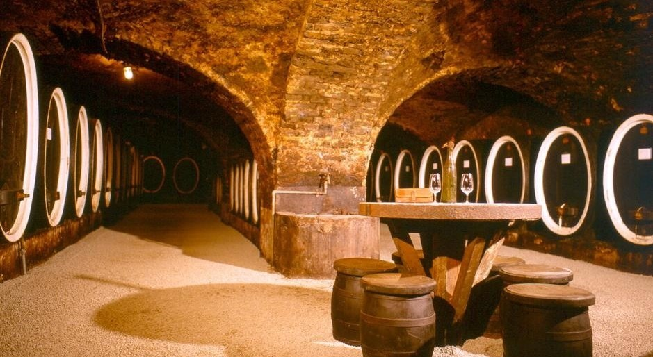 Croatian Wine Kutjevo winery wine cellar