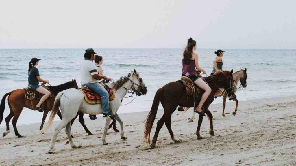 Horse Riding on the Sandy Beach