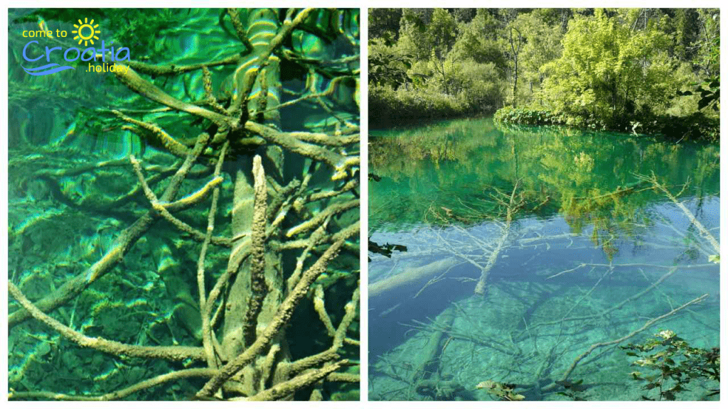 Plitvice Lakes is Full of Nature