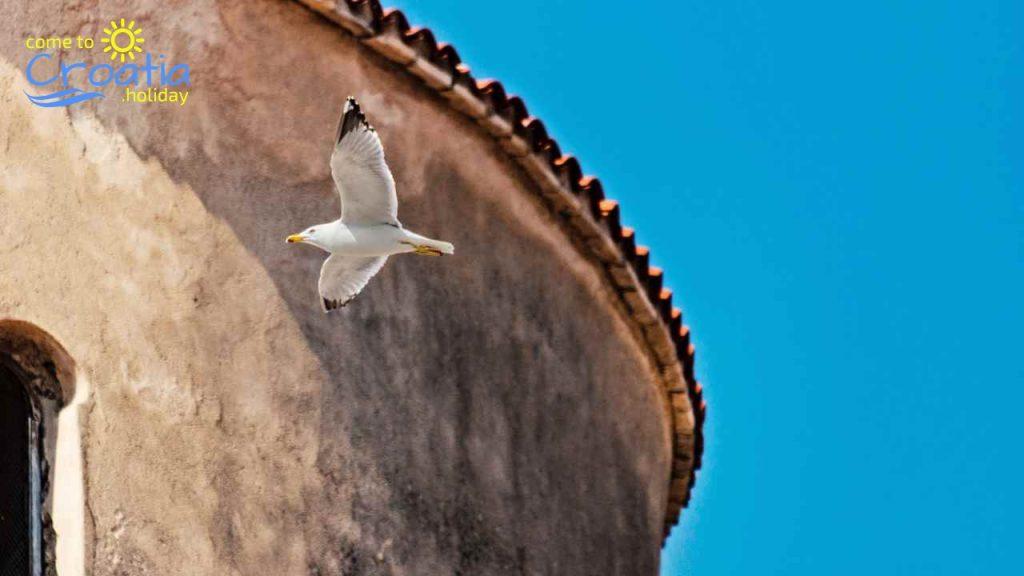 Zadar - Perfect Vacation Destination