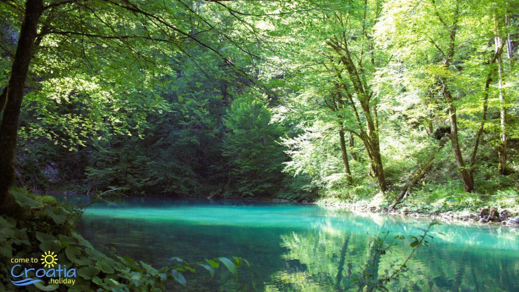 Kupa River in Spring