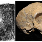 Croatian History Neanderthals